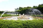 A fountain show in a botanical garden — Stock Photo