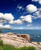 Het acadia national park maine kust usa — Stockfoto