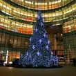 Christmas decorations in Midtown Manhattan — Stockfoto #29391073