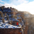 Grand Canyon National Park in Arizona — ストック写真