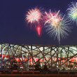 "National Olympic Stadium ""Bird Nest"" — Stock Photo"