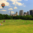 The Great Lawn in Central Park — Stock Photo
