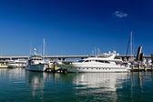 Los yates y barcos en el puerto de miami — Foto de Stock