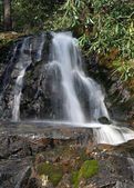 Laurel Falls in the Smoky Mountains NP — Stock Photo