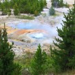 West Thumb Geyser Basin in Yellowstone — Stock Photo