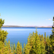 Stock Photo: The Yellowstone lake