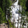 The Kepler Cascades in the Yellowstone — Stock Photo