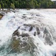 The Rhine Falls in Switzerland — Stock Photo #29403793