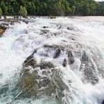 The Rhine Falls in Switzerland — Stock Photo
