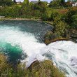 The Rhine Falls in Switzerland — Stock Photo