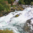 The Rhine Falls in Switzerland — Stock Photo #29403813