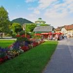The beautiful countryside around Lake Wolfgang — Stock Photo #29404315