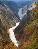 нижний водопад на гранд-каньон йеллоустоун — Стоковое фото
