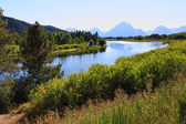Le taux de participation d'oxbow bend en grand teton — Photo