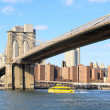 The Brooklyn bridge in New York City — Stock fotografie #29561769