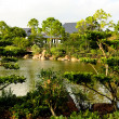 A famous traditional Japanese garden — Stock Photo