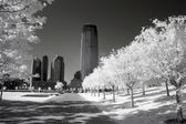 Infrared image of the Liberty Park in NJ — Stock Photo