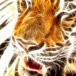 Tiger art Design  — Stock Photo