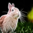 Rabbit art Design — Stock Photo