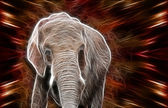 Elephant art Design — Stock Photo