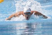 Swm: simsport vm - mens 100m fjäril qualific. michael phelps. — Stockfoto