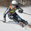 Stock Photo: FRA: Alpine skiing Val D'Isere men's slalom