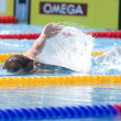 SWM: World Aquatics Championship. RyCochran. — Stock Photo #29112329