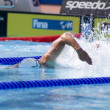 SWM: World Aquatics Championship. Daniel Madwed. — Stock Photo #29112805