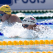 SWM: World Aquatics Championship. ArianKukors. — Stock Photo #29113957