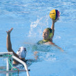 WPO: World Aquatics championship - AUS vs NZL. Kate Gynther. — Foto de Stock