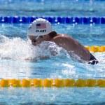 Постер, плакат: SWM: World Aquatics Championship mens 400 individual medley