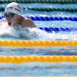 SWM: World Aquatics Championship — Stock Photo