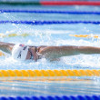 SWM: World Aquatics Championship. DanVollmer — Stock Photo #29116409
