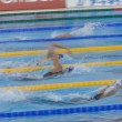 ������, ������: SWM: World Aquatics Championship Womens 800m freestyle final