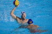 Wpo: usa v macedonia, 13 mundial natación campeonatos roma 09. poderes de jeffrey. — Foto de Stock