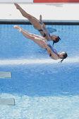 Div: Mistrovství světa 3m žen sychronised konečné. Jingjing guo, minxia wu. — Stock fotografie