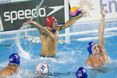 WPO: World Aquatics Championship - Semi final - USA vs Spain. Merrill Moses. — Stock Photo