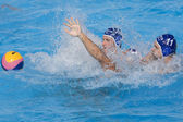 WPO: USA v Macedonia, 13th World Aquatics championships Rome 09 — Stock Photo