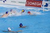 WPO: USA v Macedonia, 13th World Aquatics championships Rome 09. Anthony Azevedo — Stock Photo