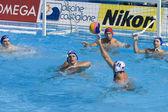 WPO: USA v Macedonia, 13th World Aquatics championships Rome 09. Jesse Smith — Stock Photo