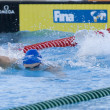 Постер, плакат: SWM: World Aquatics Championship Mens 200m freestyle semi final Ross Davernport GBR competing in the mens 200m freestyle