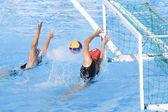 WPO: World Aquatics championship - AUS vs NZL. Carina Harache — Stock Photo