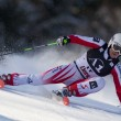 Stock Photo: SKI: Lienz Giant Slalom