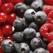Mixed berry fruit — Stock Photo #29346833