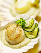 Scallops served in a scallop shell with zucchini — Stock Photo