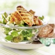 Salad with grilled chicken breast served on a plat — Foto Stock