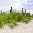 Sand dune at the beach — Stock Photo