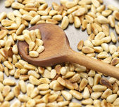 Roasting pinenuts in a pan — Stock Photo