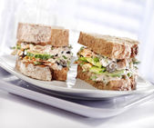 Tuna sandwich with brown bread served on a plate — Stock Photo
