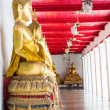 Golden buddhas in wat Mahatat thaprajun — Stock Photo